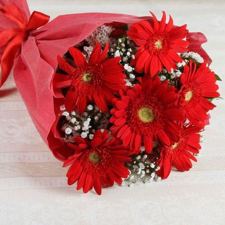 Bunch Of 6 Red Gerbera