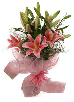 Captivating Pink Oriental Lilies